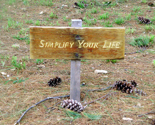 Simplifica tu vida por Robert Benner