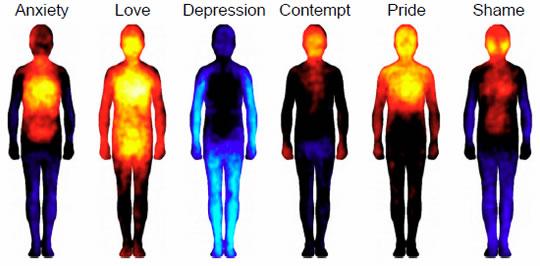 dónde sientes las emociones complejas