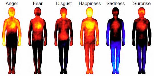 dónde sientes las emociones