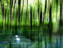 uanta-meditacion-es-necesaria-para-obtener-un-beneficio