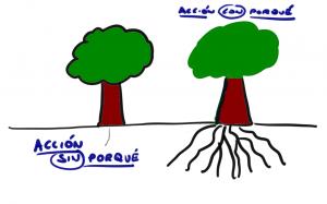 La acción con porqué es como un árbol con raíces.