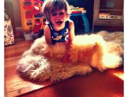 Rabieta de los niños de dos años